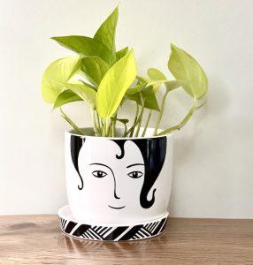 Bonnie Indoor Plant in Ceramic Planter
