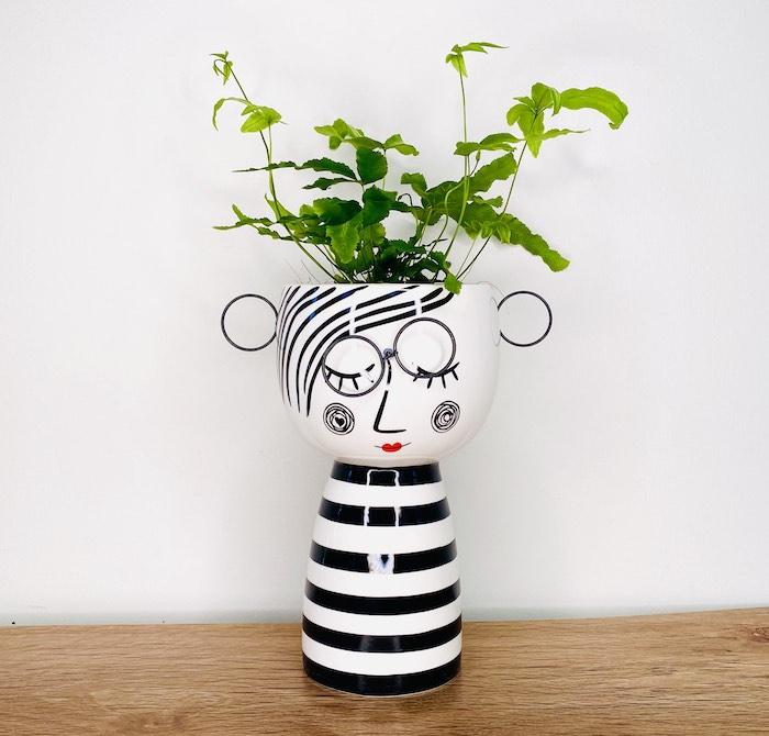 Fern in Nora Pot