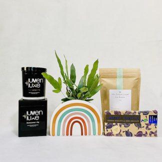 Gift Packs & Extras